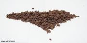 זרעי שופרית
